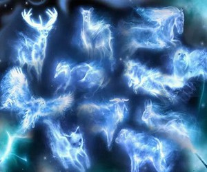 harry potter and harry potter patronus image