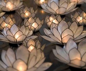 light, flowers, and beautiful image