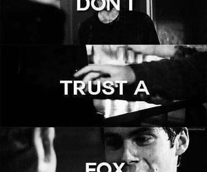 fox, teen wolf, and nogitsune image