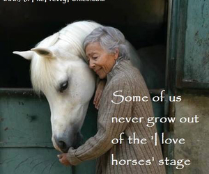 grow, horses, and me image