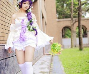 cosplay and tojo nozomi image