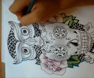 calavera, dibujo, and buho image