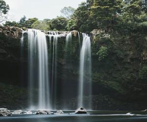beautiful, photography, and nature image