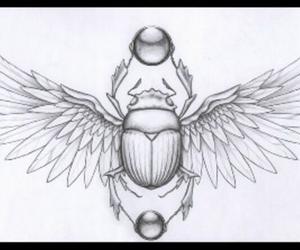 scarab image
