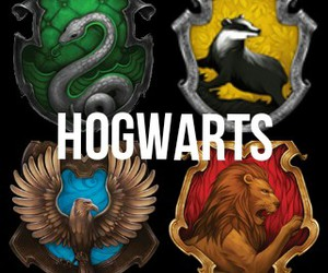 <3, gryffindor, and harry potter image