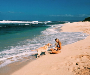 beach, dog, and girl image