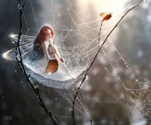 enchanting, fairy, and spider web image