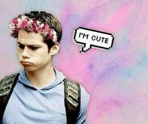 cute, dylan o'brien, and teen wolf image