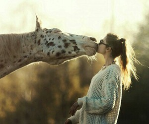 horse, kiss, and girl image