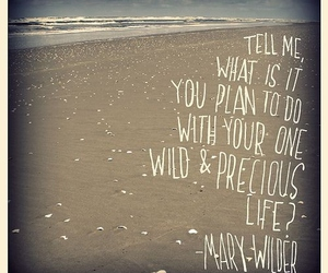 life, quote, and mary wilder image