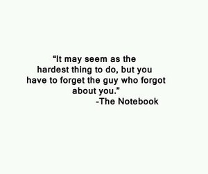 quotes, love, and the notebook image