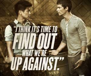 Minho, thomas, and the maze runner image