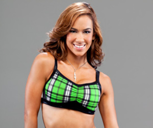 divas, wwe, and aj lee image