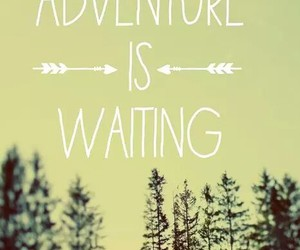 adventure, quote, and trees image