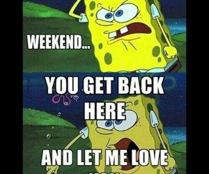 weekend, funny, and spongebob image