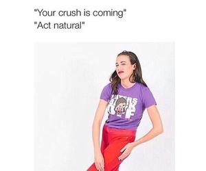 funny, crush, and miranda sings image