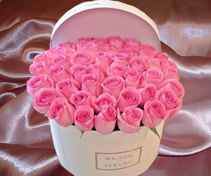 pink, pretty, and roses image