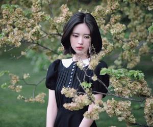 asian girl, short hair, and cute image