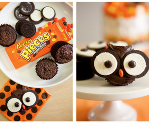 owl, chocolate, and food image