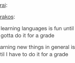 tumblr, funny, and grades image