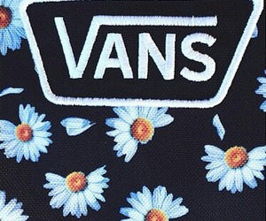 vans, daisy, and flowers image