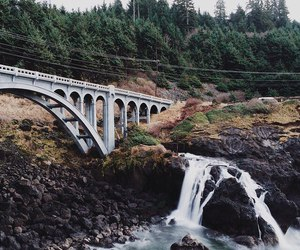 bridge, forest, and mountain image