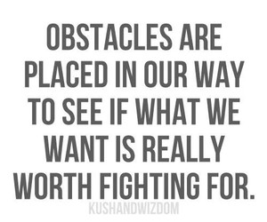 obstacle, quote, and truth image