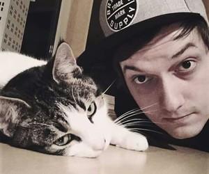 cap, cat, and flo image