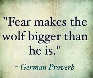 quotes, fear, and wolf image