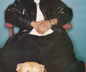 dog, hip hop, and dmx image