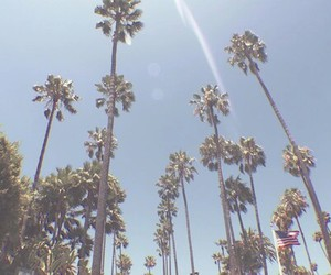 sky, summer, and la image