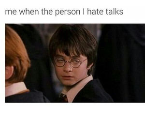 funny, harry potter, and hate image