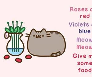 pusheen, food, and cat image