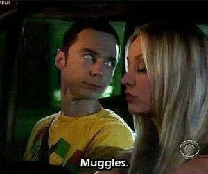 harry potter, muggles, and sheldon image