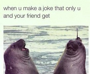 funny, friends, and joke image