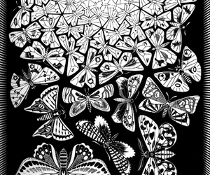 butterflies, M.C. Escher, and art image