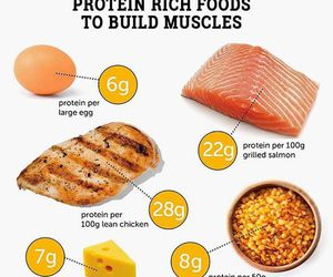 protein, fitness, and food image