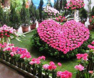 flowers, heart, and garden image
