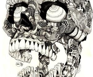 skull, art, and illustration image