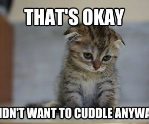 cute, aww, and cuddle image