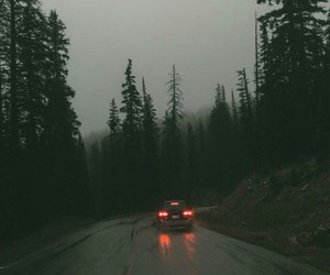 nature, road, and car image