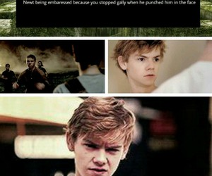 the maze runner, imagines, and thomas brodie sangster image