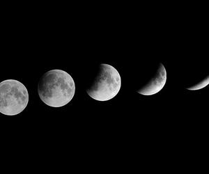night, luna, and moon image