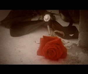 rosa, rose, and The Phantom of the Opera image