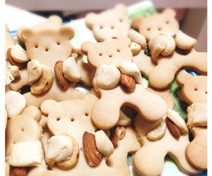 bear, sweet, and Cookies image