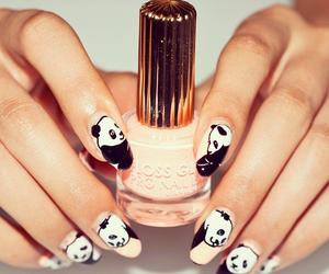 nail art, nails, and panda image