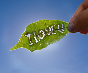 i love who? image