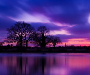 clouds, purple, and tree image