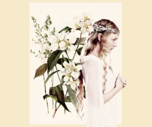 edit, flowers, and lord of the rings image