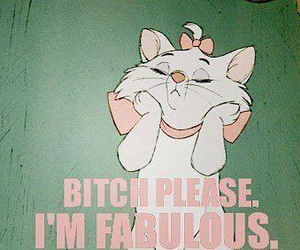 fabulous, cat, and bitch image